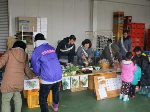 IMG_0982野菜